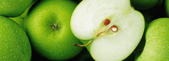 Invelop for fruit and crop protection